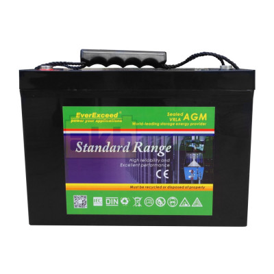 Аккумулятор EverExceed ST12-100 Standard Range