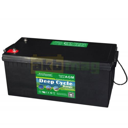 Аккумулятор EverExceed DP12-200