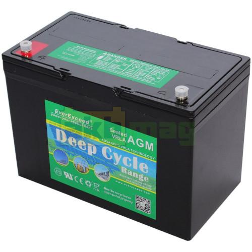 Аккумулятор EverExceed DP12-100